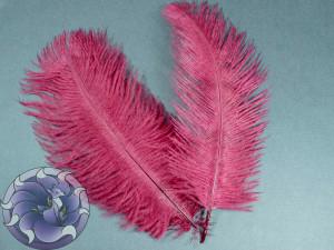 Перо страуса цвет Марсала 15-20 см