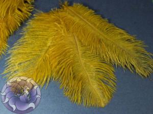 Перо страуса 12-18см Цвет горчица