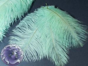 Перо страуса 12-18см Цвет мятный