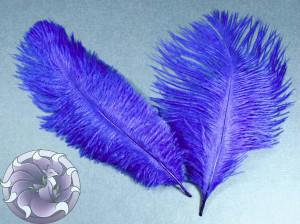 Перо страуса цвет Сапфир синий 15-20 см