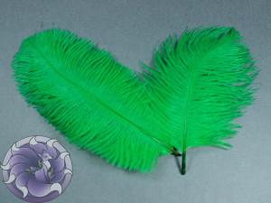 Перо страуса цвет Зеленый 15-20 см
