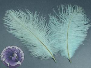 Перо страуса цвет Небесный 15-20 см