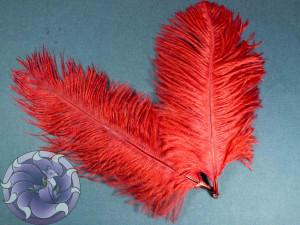 Перо страуса цвет Красный 15-20 см